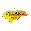 PILARH